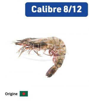 Crevettes Grises 8-12 p/Kg